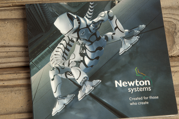 Newton systems